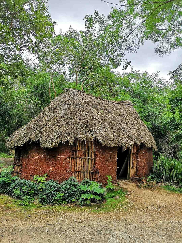Comment construire une cabane